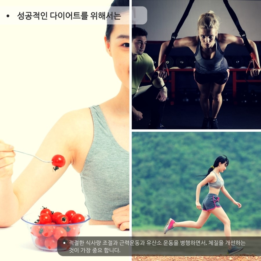 11.모린가,_김네마,_녹차,_다이어트집사.jpg