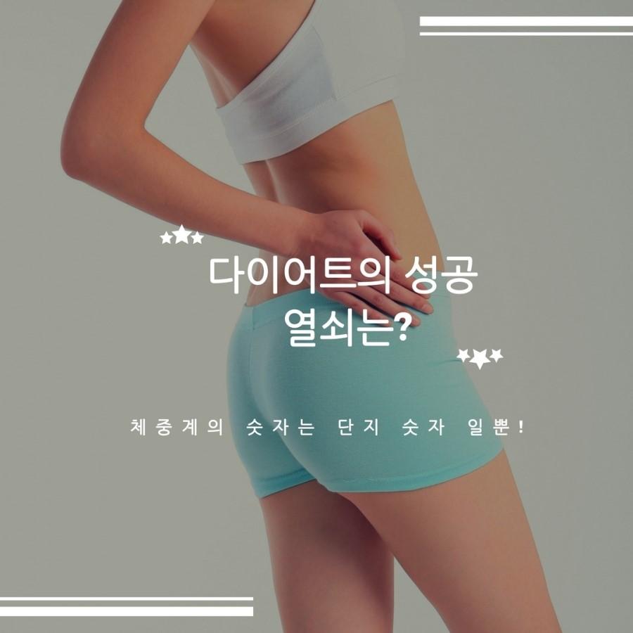 10._다이어트_성공,모린가,_김네마,_녹차,_다이어트집사.jpg